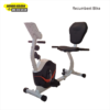 Recumbent Bike ID 438N